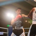 Bermuda Redemption Boxing Nov 2018 JM (173)