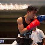 Bermuda Redemption Boxing Nov 2018 JM (174)