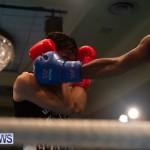 Bermuda Redemption Boxing Nov 2018 JM (175)