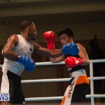 Bermuda Redemption Boxing Nov 2018 JM (176)