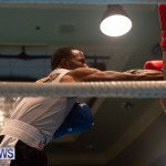 Bermuda Redemption Boxing Nov 2018 JM (177)