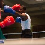 Bermuda Redemption Boxing Nov 2018 JM (191)