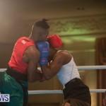 Bermuda Redemption Boxing Nov 2018 JM (201)