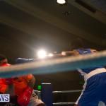 Bermuda Redemption Boxing Nov 2018 JM (21)