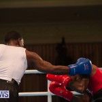 Bermuda Redemption Boxing Nov 2018 JM (210)