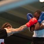 Bermuda Redemption Boxing Nov 2018 JM (221)