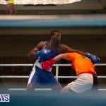 Bermuda Redemption Boxing Nov 2018 JM (23)