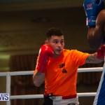 Bermuda Redemption Boxing Nov 2018 JM (24)