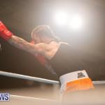Bermuda Redemption Boxing Nov 2018 JM (244)