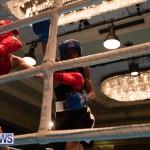 Bermuda Redemption Boxing Nov 2018 JM (255)