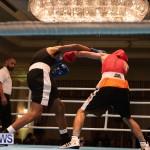 Bermuda Redemption Boxing Nov 2018 JM (256)