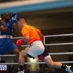 Bermuda Redemption Boxing Nov 2018 JM (27)