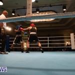 Bermuda Redemption Boxing Nov 2018 JM (270)