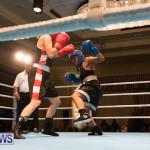 Bermuda Redemption Boxing Nov 2018 JM (271)