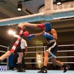 Bermuda Redemption Boxing Nov 2018 JM (272)