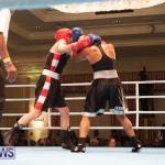 Bermuda Redemption Boxing Nov 2018 JM (274)