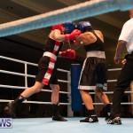 Bermuda Redemption Boxing Nov 2018 JM (275)