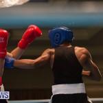 Bermuda Redemption Boxing Nov 2018 JM (3)