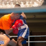 Bermuda Redemption Boxing Nov 2018 JM (30)