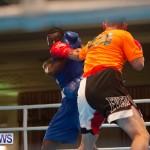 Bermuda Redemption Boxing Nov 2018 JM (31)