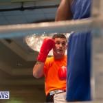 Bermuda Redemption Boxing Nov 2018 JM (36)