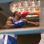 Bermuda Redemption Boxing Nov 2018 JM (37)