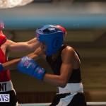 Bermuda Redemption Boxing Nov 2018 JM (4)