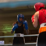 Bermuda Redemption Boxing Nov 2018 JM (5)