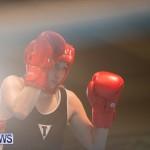 Bermuda Redemption Boxing Nov 2018 JM (50)