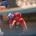 Bermuda Redemption Boxing Nov 2018 JM (51)