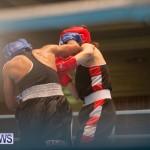 Bermuda Redemption Boxing Nov 2018 JM (53)