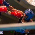Bermuda Redemption Boxing Nov 2018 JM (54)
