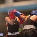 Bermuda Redemption Boxing Nov 2018 JM (56)