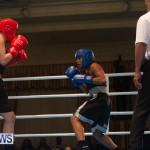 Bermuda Redemption Boxing Nov 2018 JM (58)