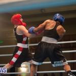 Bermuda Redemption Boxing Nov 2018 JM (62)