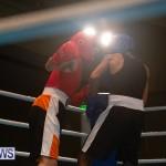 Bermuda Redemption Boxing Nov 2018 JM (7)