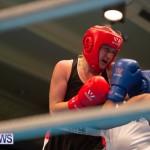 Bermuda Redemption Boxing Nov 2018 JM (71)