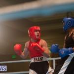 Bermuda Redemption Boxing Nov 2018 JM (8)