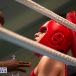Bermuda Redemption Boxing Nov 2018 JM (9)