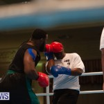 Bermuda Redemption Boxing Nov 2018 JM (93)
