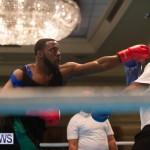 Bermuda Redemption Boxing Nov 2018 JM (97)