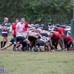 Bermuda Rugby Football Union League, November 24 2018-0342