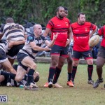 Bermuda Rugby Football Union League, November 24 2018-0361
