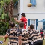 Bermuda Rugby Football Union League, November 24 2018-0392