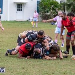Bermuda Rugby Football Union League, November 24 2018-0404