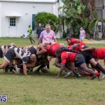 Bermuda Rugby Football Union League, November 24 2018-0416