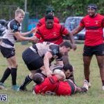 Bermuda Rugby Football Union League, November 24 2018-0496