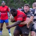Bermuda Rugby Football Union League, November 24 2018-0503