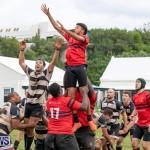 Bermuda Rugby Football Union League, November 24 2018-0523