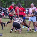 Bermuda Rugby Football Union League, November 24 2018-0598